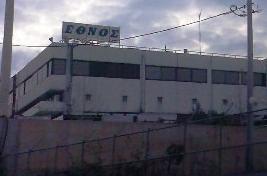 ethnos1